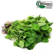 Agrião orgânico maço 100g
