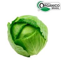 Repolho verde orgânico 400g