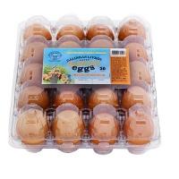 Ovos vermelhos de galinhas livres Sunny Eggs (20 unidades)