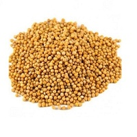 Mostarda amarela em grãos 50g