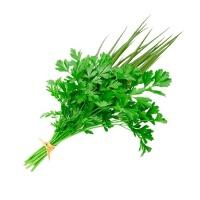 Cheiro verde salsa e cebolinha maço