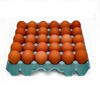 Ovos vermelhos grandes (30 unidades)